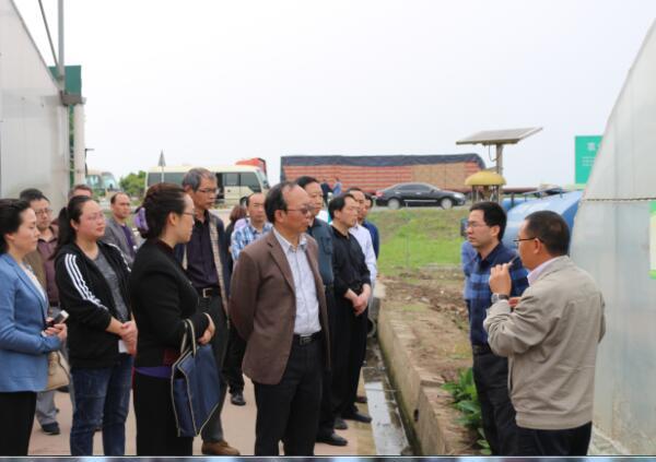 2017年4月27省人大到广汉竞博app官方下载ios农业来调研